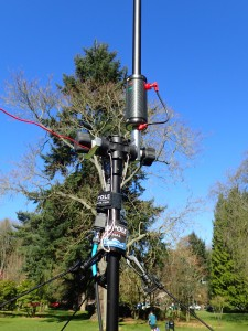 Buddipole as 20m vertical