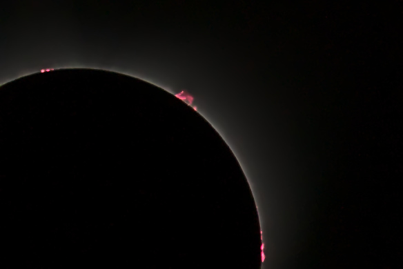 Solar prominaeces during the eclipse