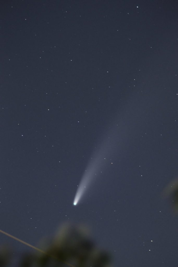 C/2020 NEOWISE F3 Comet
